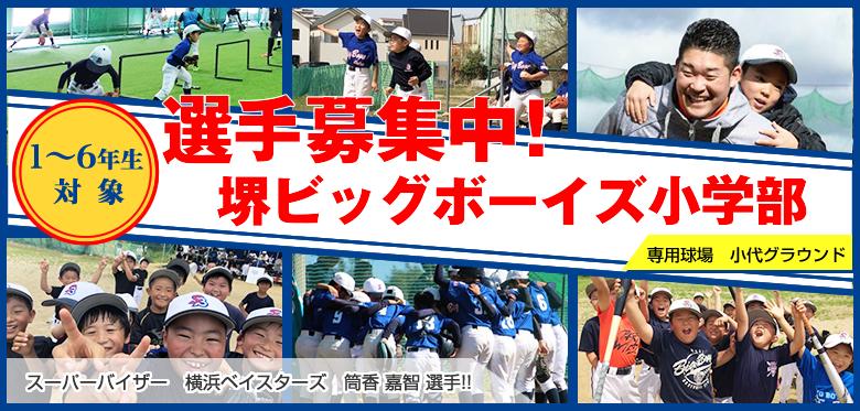 堺ビッグボーイズ小学部選手募集中